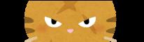 猫の目をピックアップしたイラスト