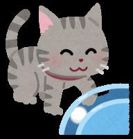 遊ぶ猫のイラスト