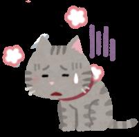 暑い猫のイラスト