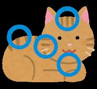 猫の気持ちいいポイントのイラスト