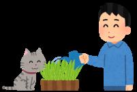 猫草を育てる人のイラスト