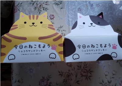 猫のお菓子の写真