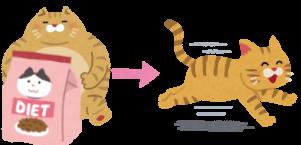 ダイエットに成功した猫のイラスト