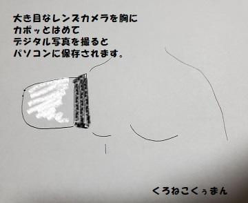 f:id:kuronekokuuman:20201105212610j:plain