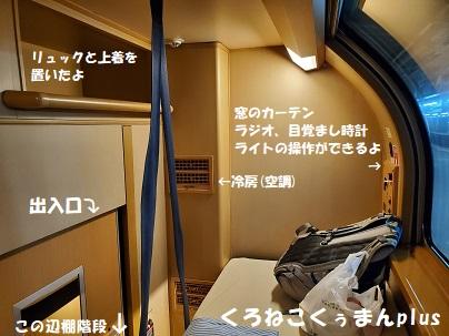 f:id:kuronekokuuman:20201210202800j:plain
