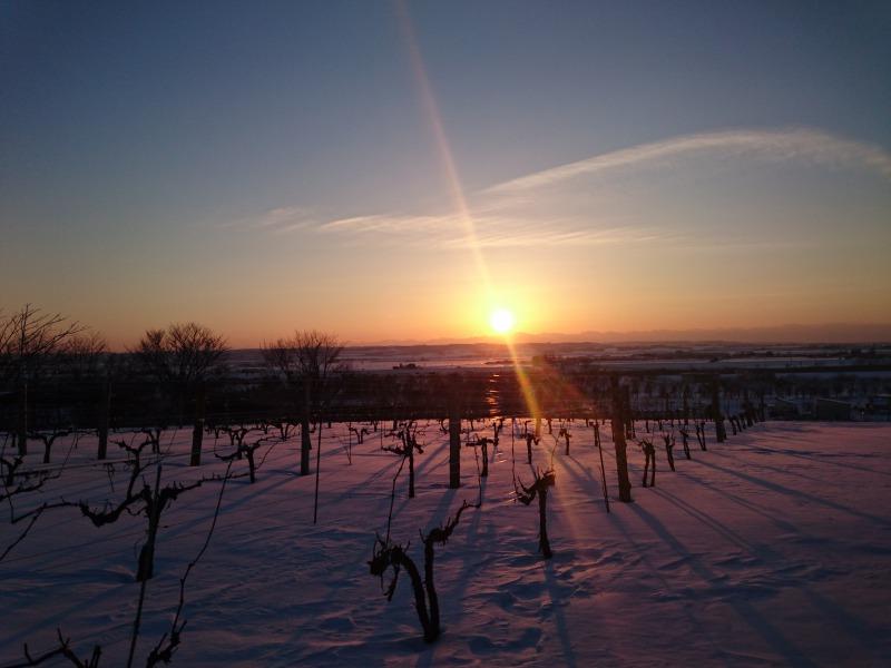 ワイン城からの夕陽,池田町地域おこし協力隊blog
