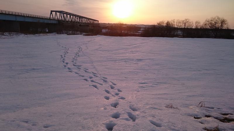 夕陽ともぐり橋コラボ。リベンジ