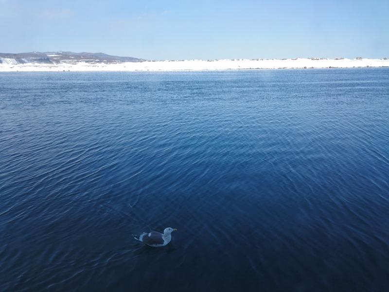 網走砕氷船オーロラ