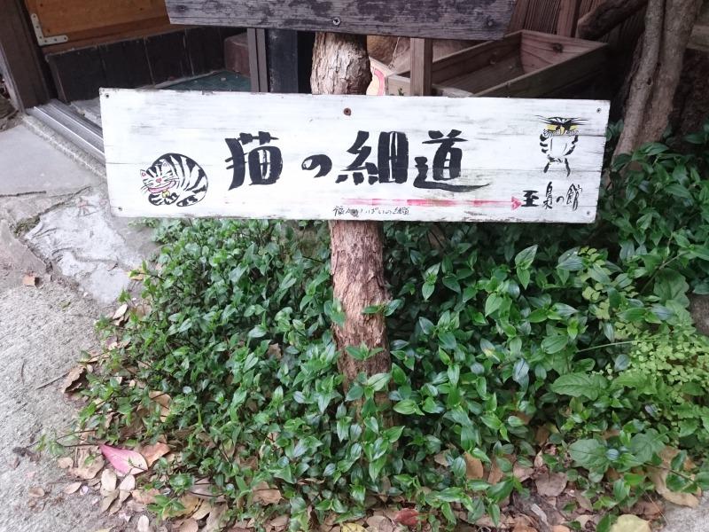 尾道市猫の細道視察,池田町地域おこし協力隊blog