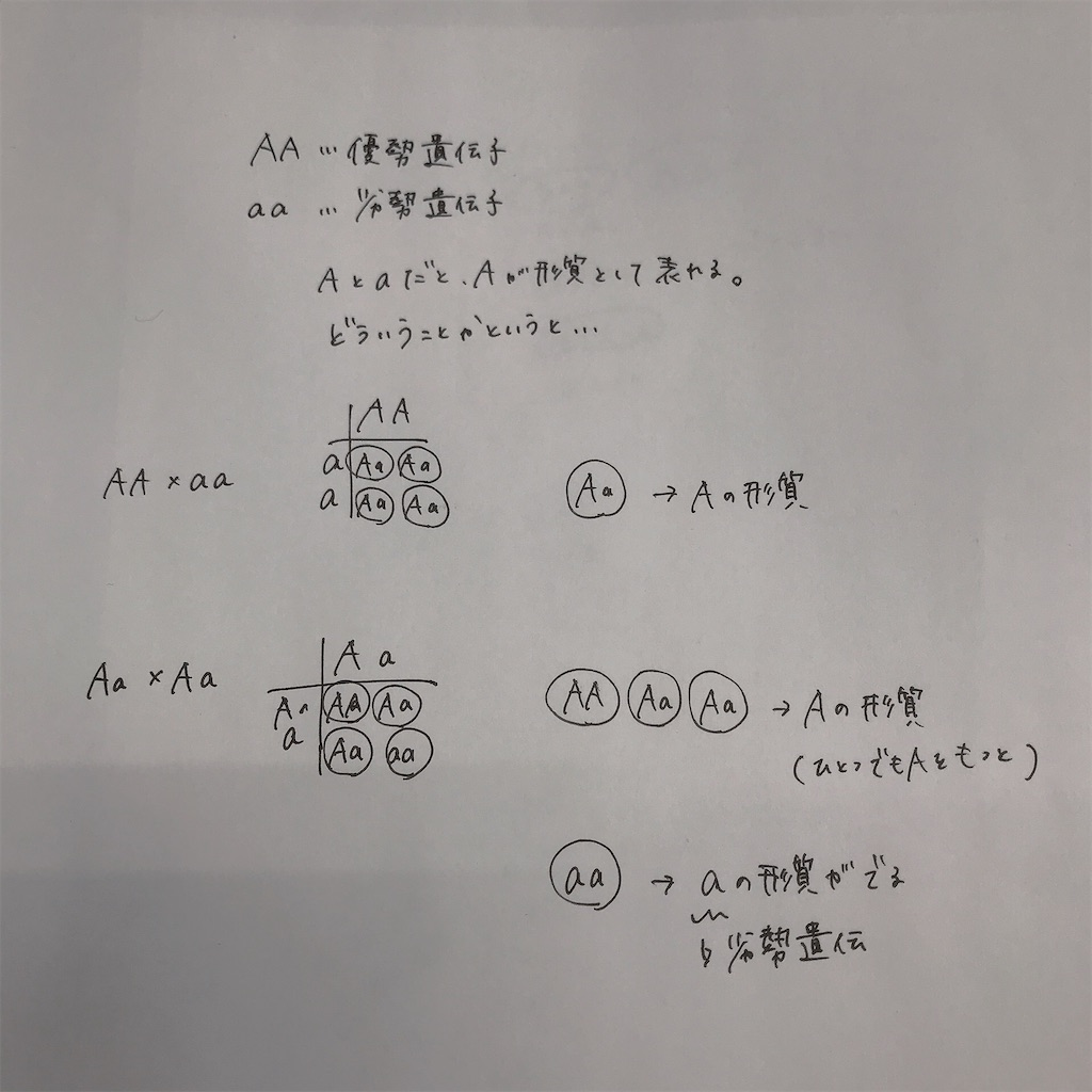 f:id:kurosawa07:20210131163903j:image