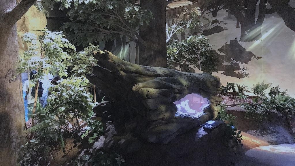 f:id:kurosawa07:20210301112031j:image