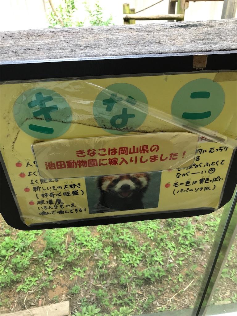 f:id:kurosawa07:20210306110706j:image