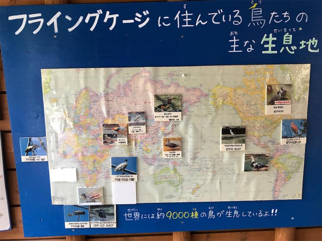 f:id:kurosawa07:20210306110721j:image