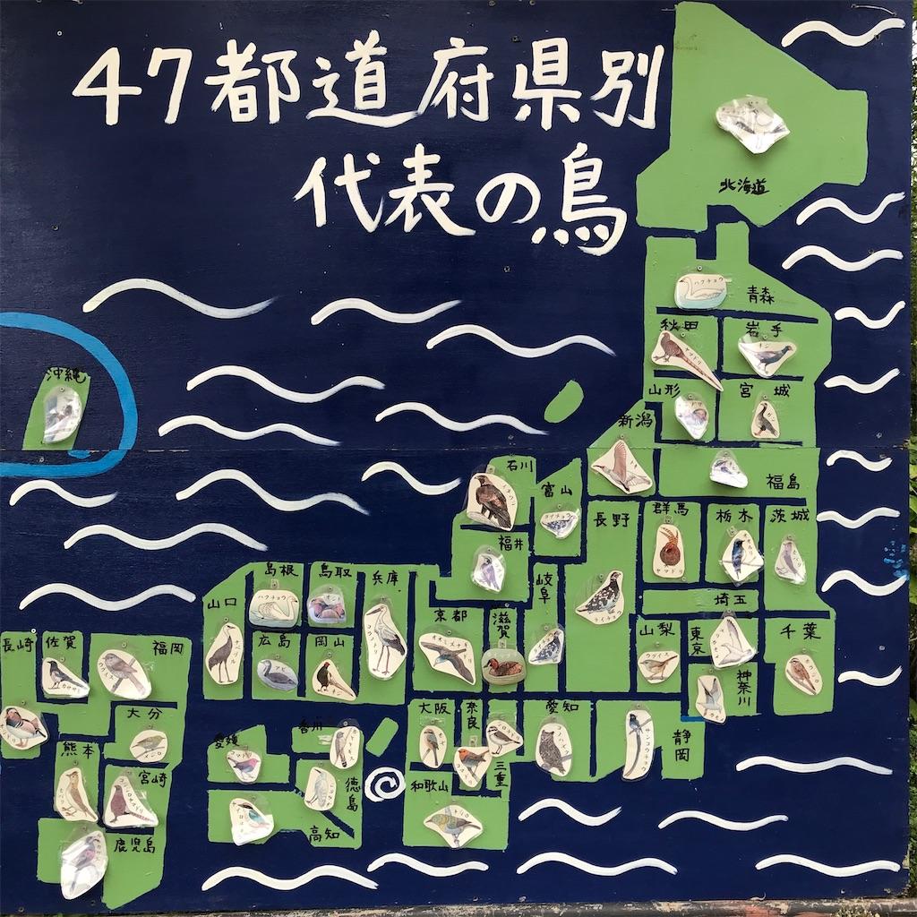 f:id:kurosawa07:20210306191548j:image
