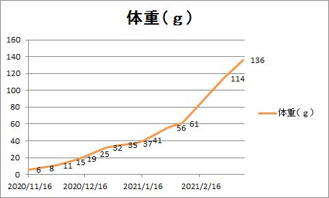 f:id:kurosawa07:20210522233047p:plain