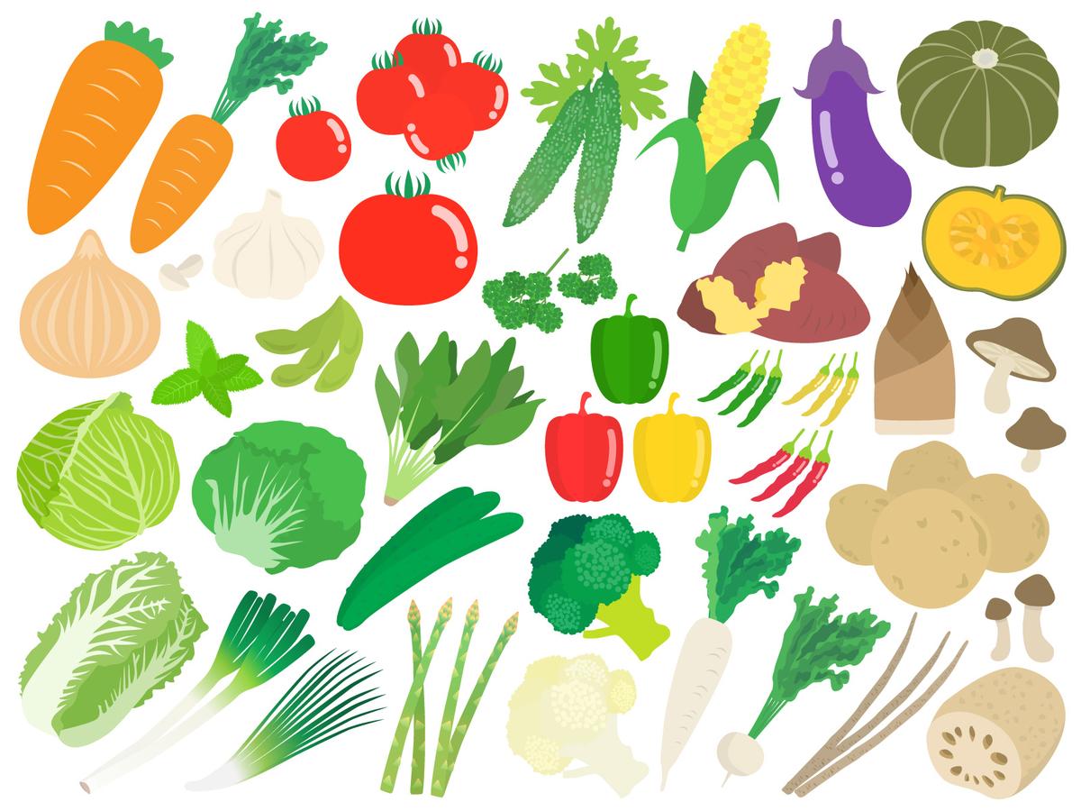 高める を 免疫 食べ物 力
