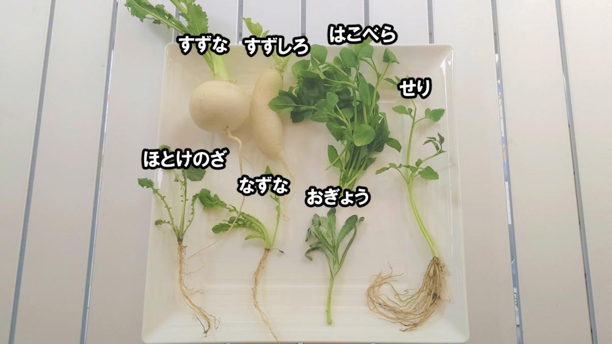 f:id:kurotonbon:20210107163144p:plain