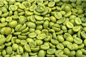 生コーヒー豆:スリミナージュ主成分