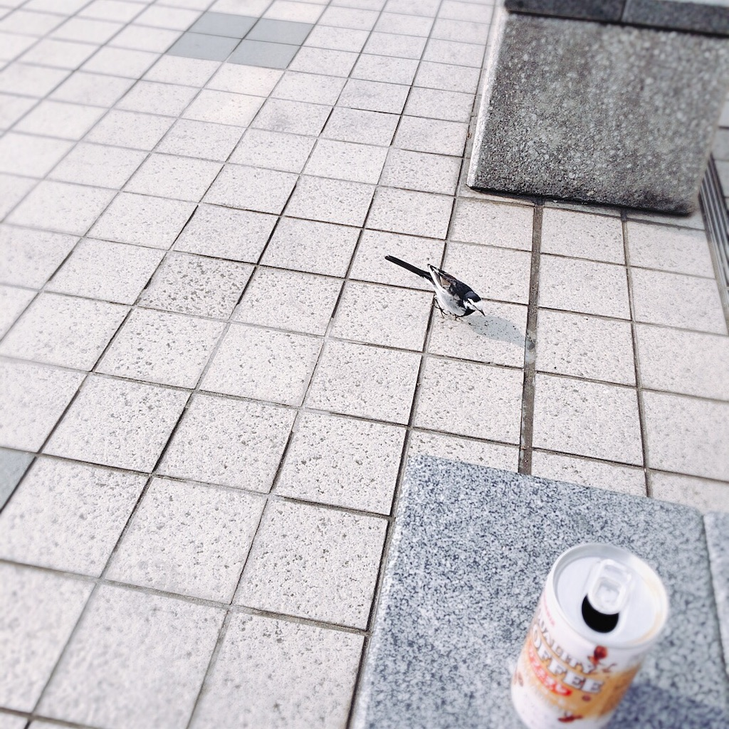 f:id:kuroyagi1:20190327151513j:image