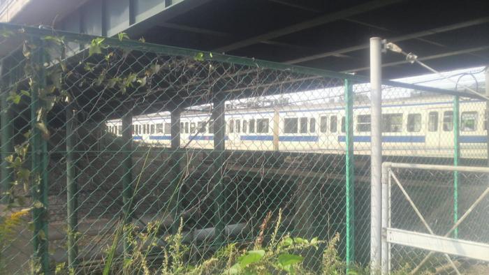 f:id:kurukuru3:20091019180804j:image:h300