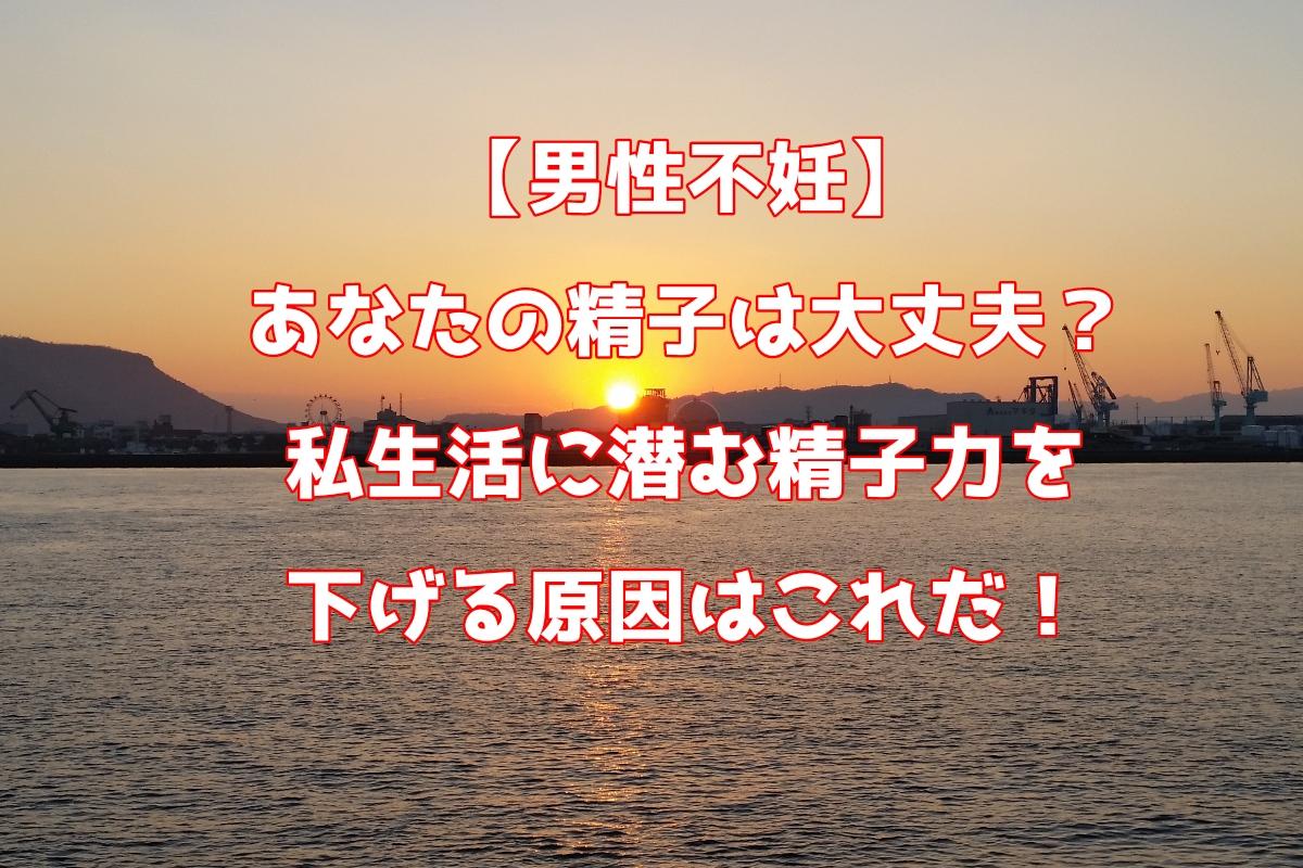 f:id:kurumaebi-papa:20190614002053j:plain