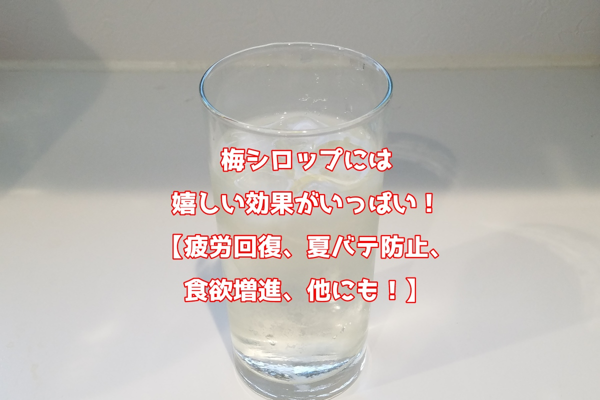 f:id:kurumaebi-papa:20190804135022j:plain