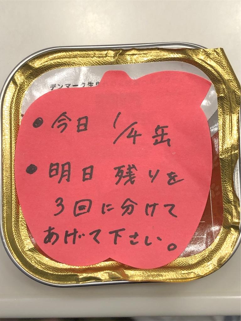 f:id:kurumi-silver:20191110210452j:image