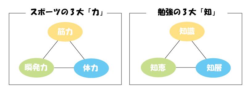 f:id:kurumi10021002:20171006144321j:plain