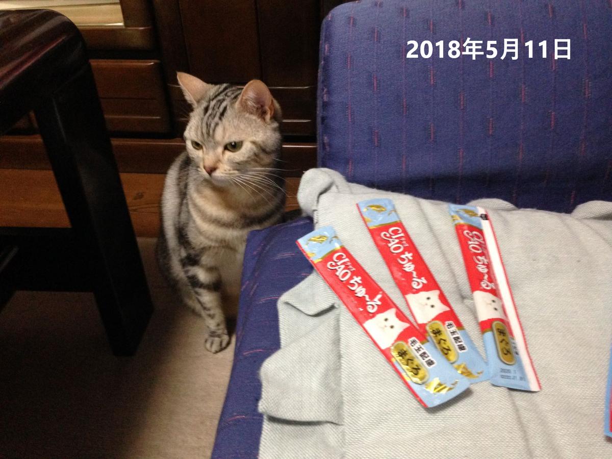 f:id:kurumi2016:20210512144739p:plain