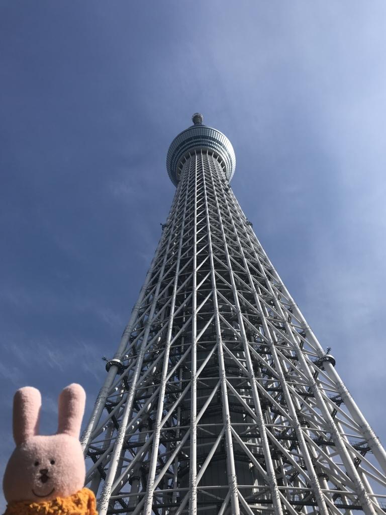 f:id:kurumi_sisyamo:20180530192345j:plain