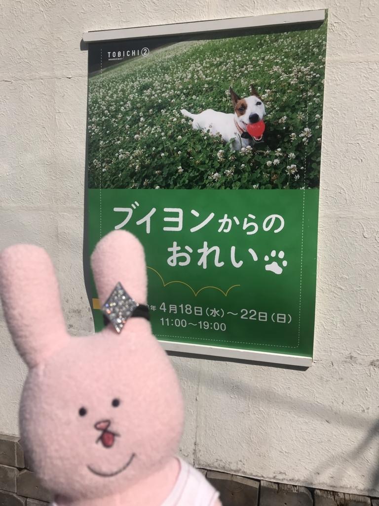 f:id:kurumi_sisyamo:20180727204506j:plain