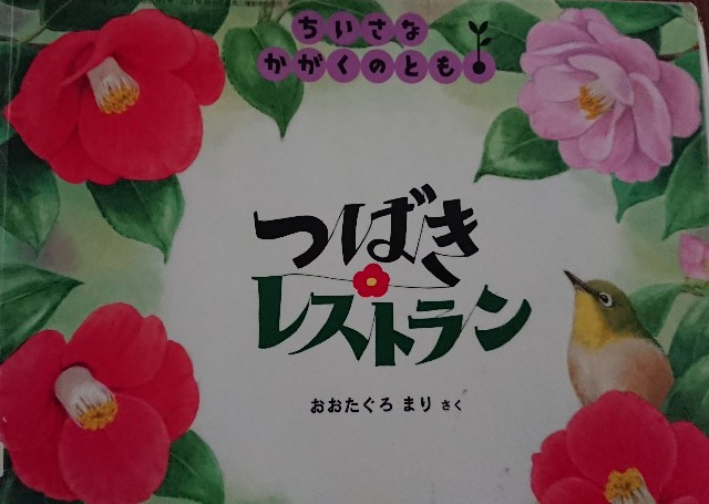 f:id:kurumibook:20200227221242j:image