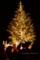 赤レンガ クリスマスマーケット2015