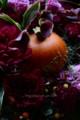 [花]ハロウィンアレンジ2016