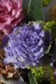 [花]中曾根さんのトルコキキョウ6