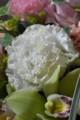 [花]中曾根さんのトルコキキョウ5