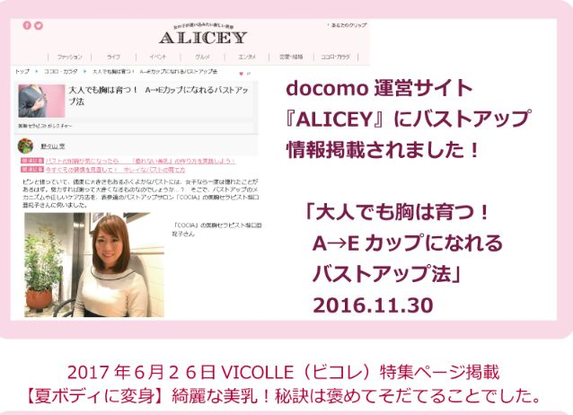 f:id:kuruminoki999:20171106172257j:plain