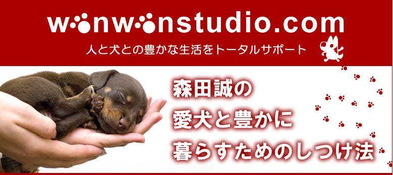 f:id:kuruminoki999:20180212110728j:plain