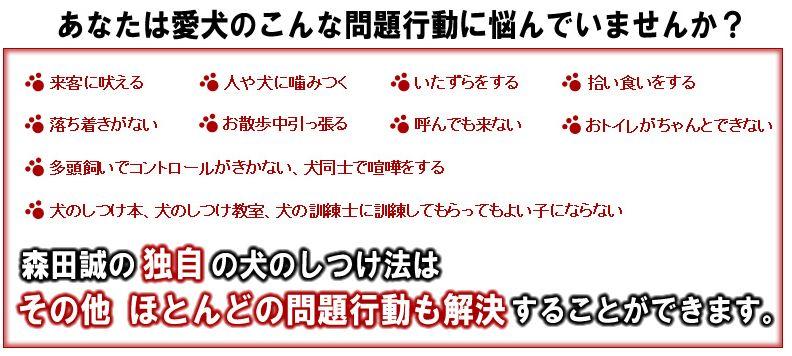 f:id:kuruminoki999:20180212110934j:plain