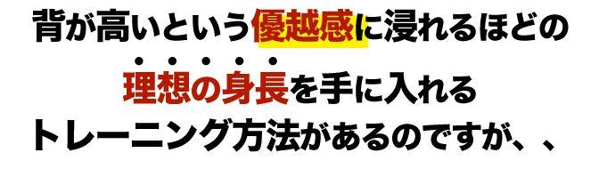 f:id:kuruminoki999:20180214114045j:plain