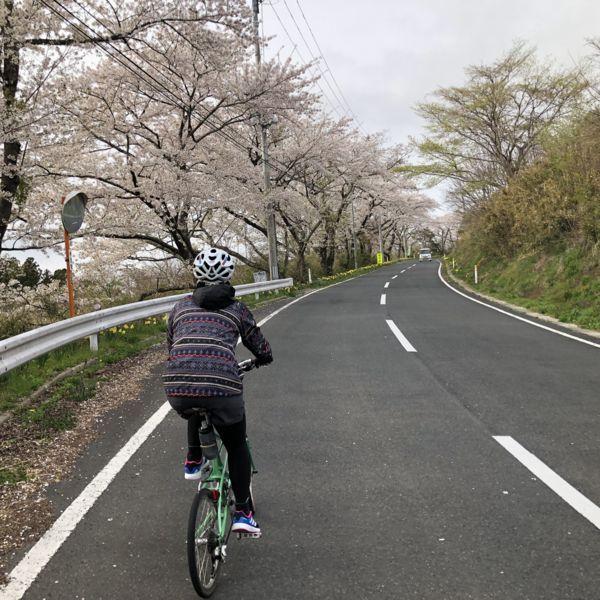 f:id:kurun-kurun-cycle:20180417231642j:image