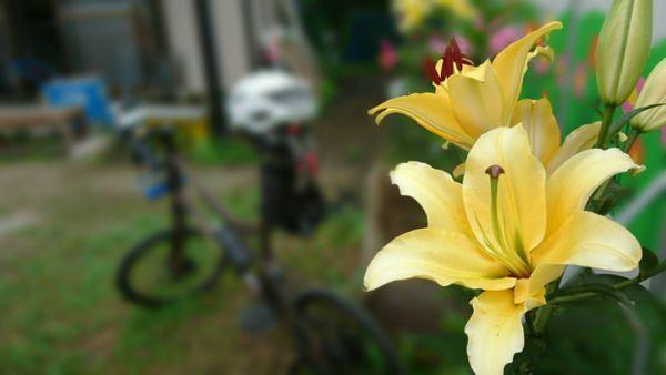 f:id:kurun-kurun-cycle:20180716204307j:image