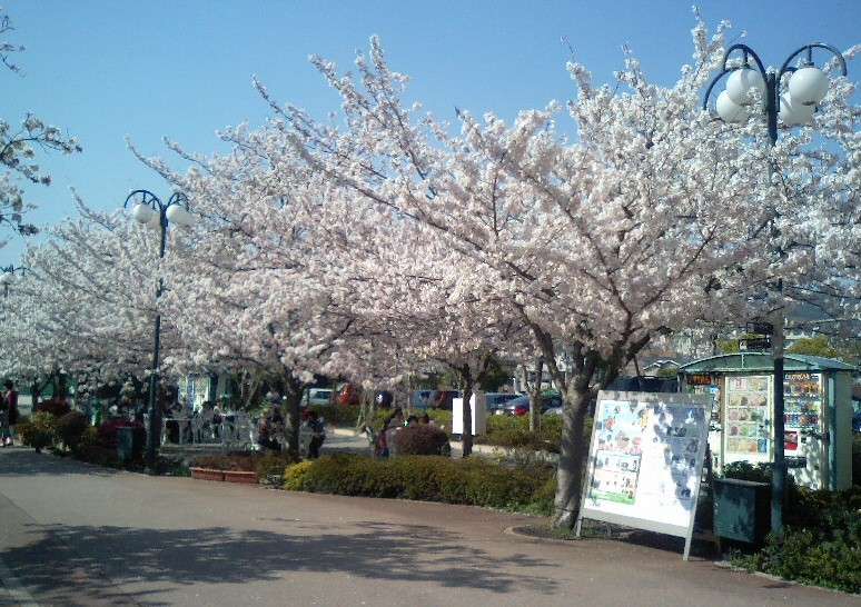 f:id:kuruppo:20090409184325j:image:w500