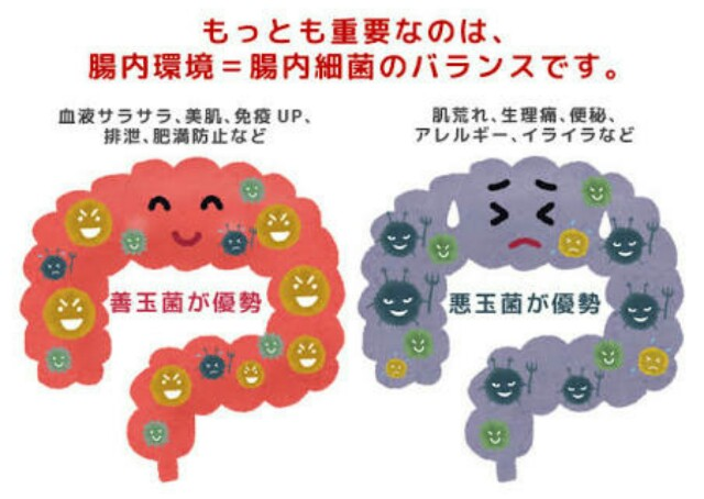 f:id:kusabii:20170628175545j:plain