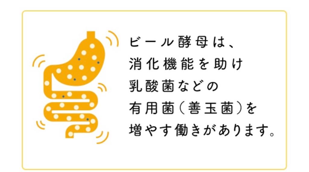 f:id:kusabii:20171206140852j:image