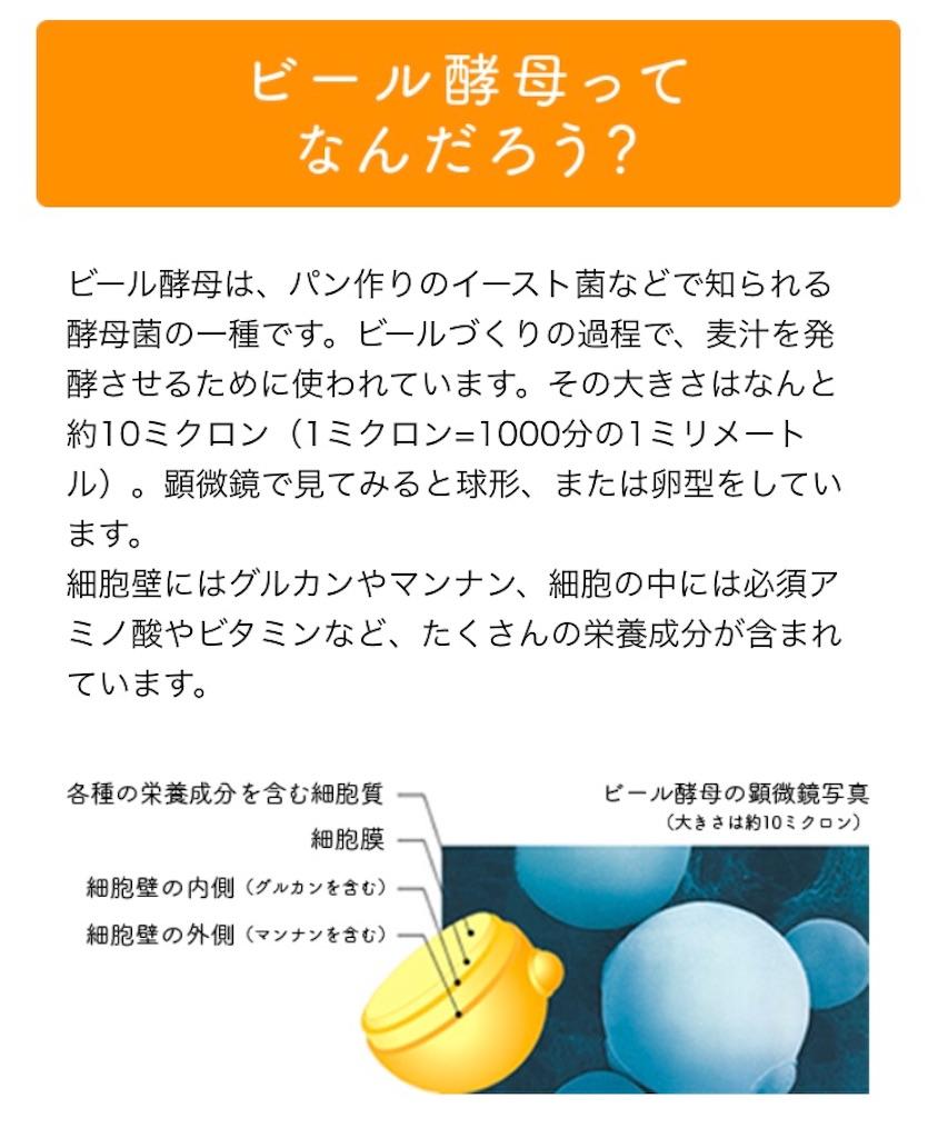 f:id:kusabii:20171206145728j:image