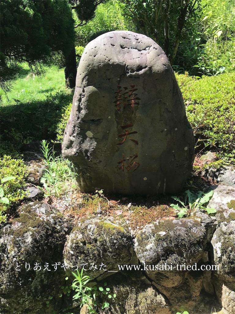 f:id:kusabii:20180806120446j:image
