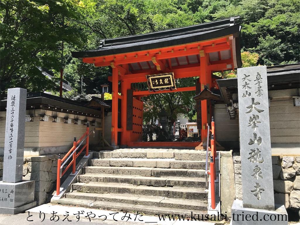 f:id:kusabii:20180806190519j:image