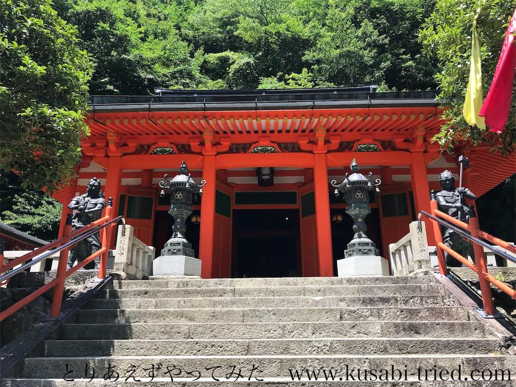 f:id:kusabii:20180806191515j:image