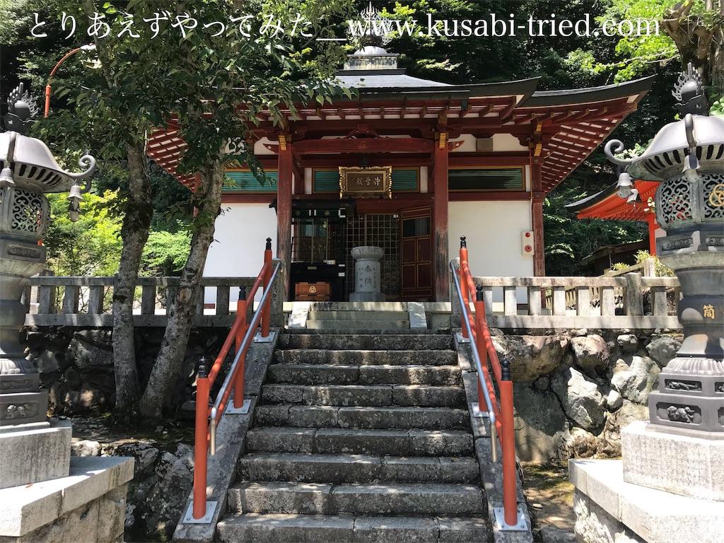 f:id:kusabii:20180806191520j:image